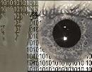 Biometrics - How Technology Can Watch You
